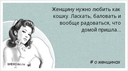 Женщину нужно любить как кошку. Ласкать, баловать и вообще радоваться, что домой пришла…