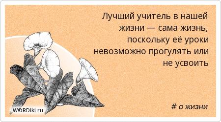 Лучший учитель в нашей жизни — сама жизнь, поскольку её уроки невозможно прогулять или не усвоить