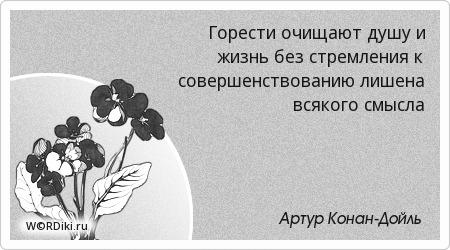 Горести очищают душу и жизнь без стремления к совершенствованию лишена всякого смысла