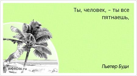 Порядок в жизни цитаты